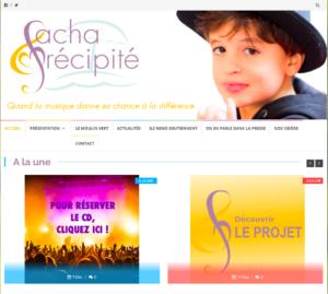 le site internet Sacha Précipité